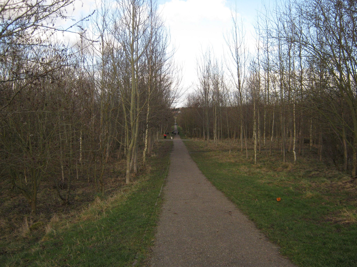 Swadlincote Woodlands path