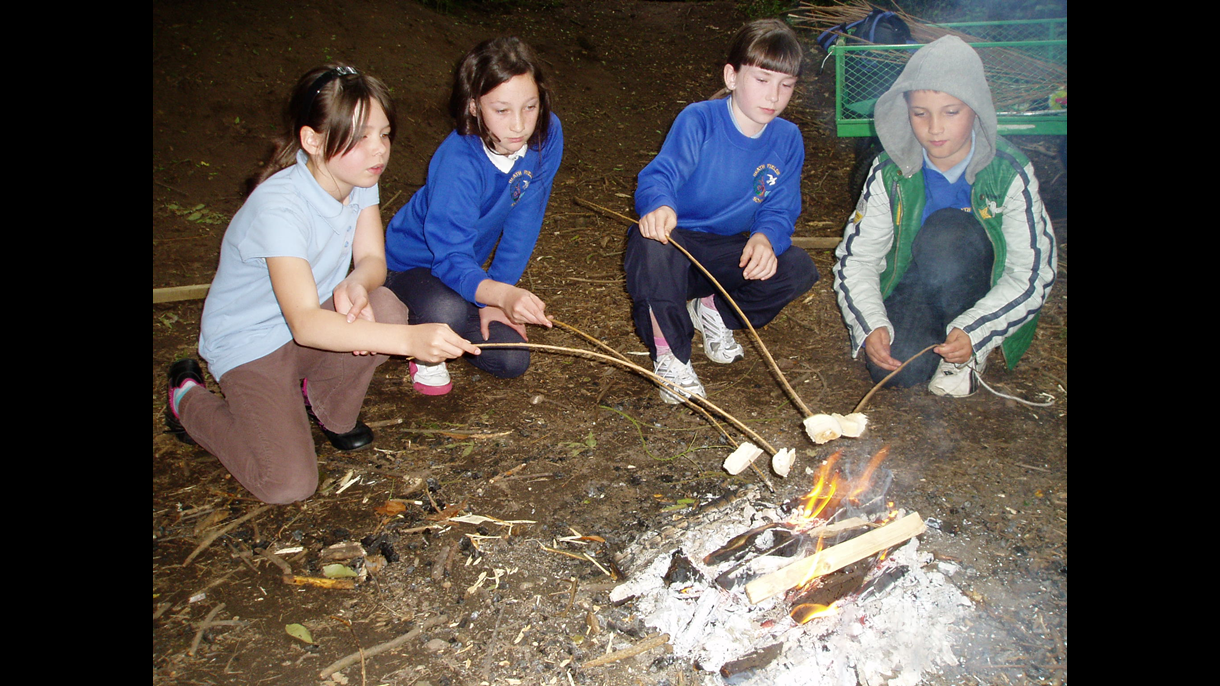 Toasting marshmallows in the woods