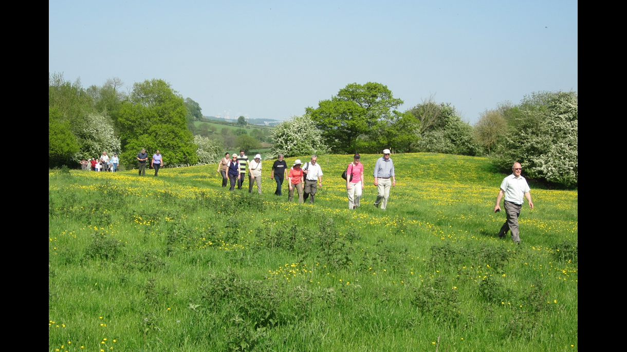 Calke archaeology walk